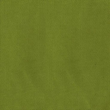 Велюр Verona 38 (apple green)