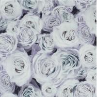 Велюр Rose 02